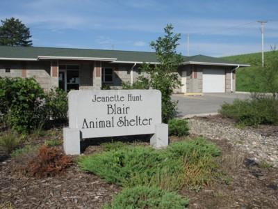 Animal Shelter, front